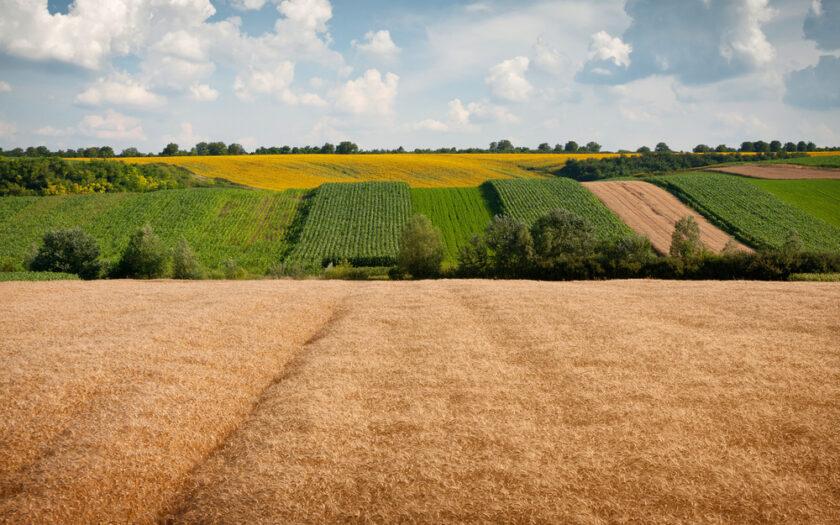 Земли сельхозугодий